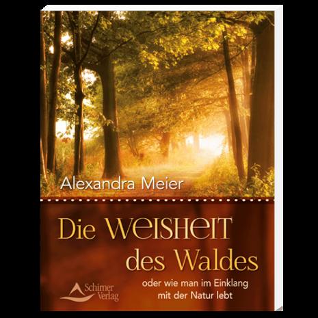die_weisheit_des_waldes